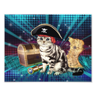 pirate cat photographic print