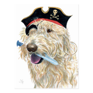 Pirate Cream Labradoodle Postcard