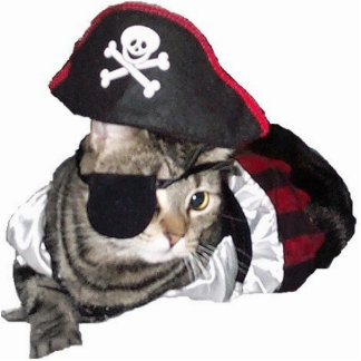 Pirate kitty cat shaped magnet/ornament/keychain photo sculpture key ring