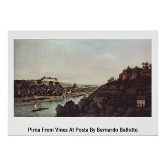 Pirna From Vines At Posta By Bernardo Bellotto Print