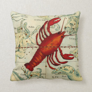 Pisces Cancer Fish Lobster Sea Astrology Astronomy Cushion