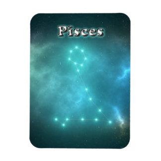 Pisces constellation magnet
