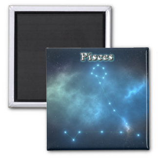 Pisces costellation magnet