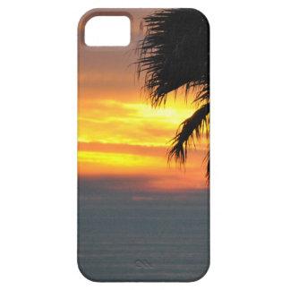 Pismo Beach iPhone 5 Cases