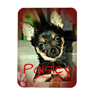Pistol Packing Lady Paisley Marie Rectangular Photo Magnet