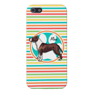 Pit Bull Bright Rainbow Stripes Case For iPhone 5
