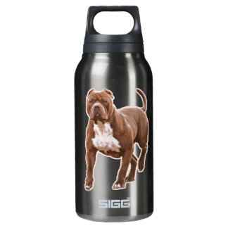 Pit bull brown insulated water bottle