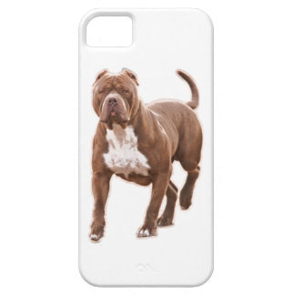 Pit bull brown iPhone 5 covers