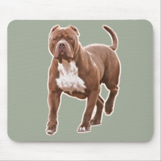 Pit bull brown mouse pad