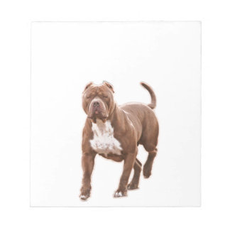 Pit bull brown notepad