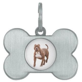 Pit bull brown pet ID tag