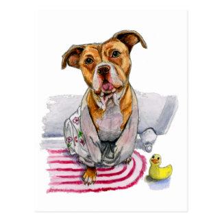 Pit Bull Dog in Bathrobe Watercolor Painting Postcard