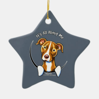 Pit Bull :: It's All About Me Ceramic Ornament