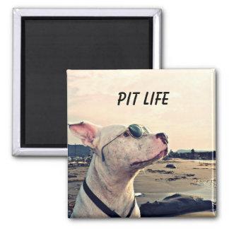 Pit Bull Life Magnet