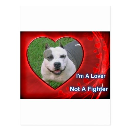 Pit Bull Lover Post Cards