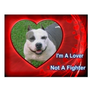 Pit Bull Lover Post Card