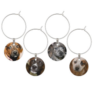 PIT BULL PUPPIES WINE GLASS CHARMS