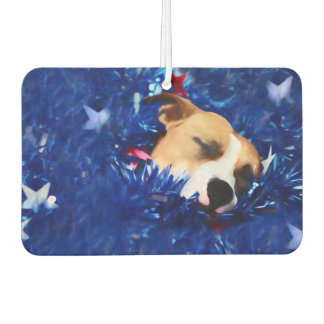 Pit Bull Rescue Dog in USA Stars and Stripes
