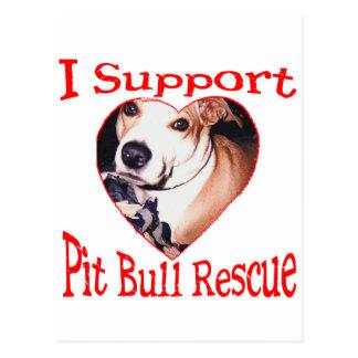 Pit bull Rescue Postcard