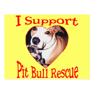 Pit bull Rescue Post Cards