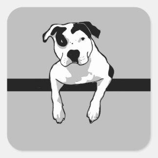 Pit Bull T-Bone Graphic Square Sticker