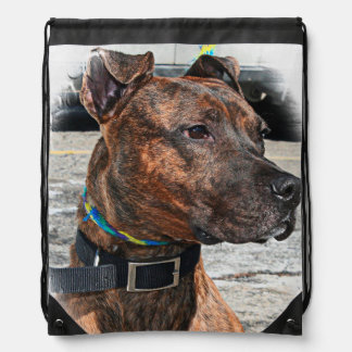 PIT BULL TERRIER DRAWSTRING BACKPACK