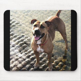Pit Bull Terrier Mouse Pad