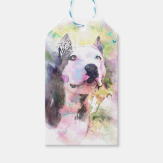 Pit Bull Water Colour