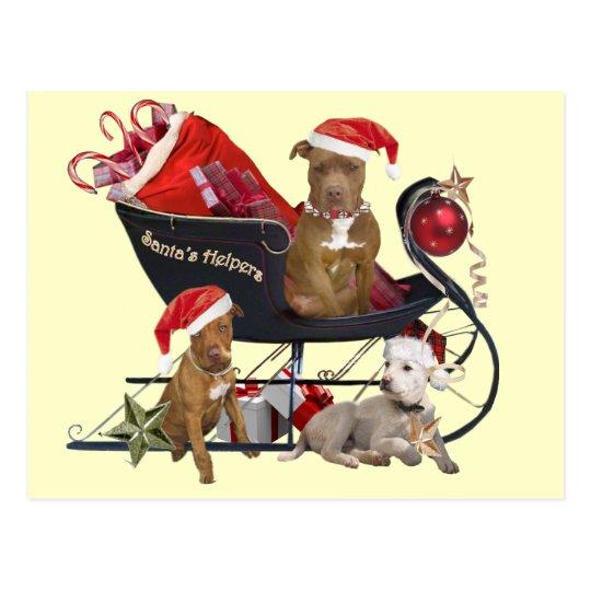 Pitbill Terrier Santa's Helpers Postcard