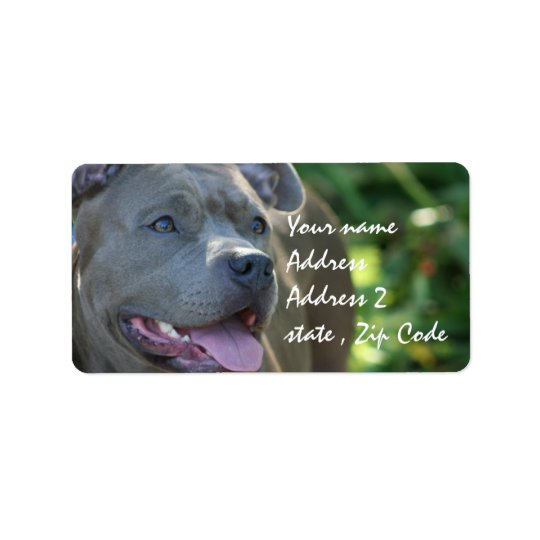 Pitbull Dog Address Label