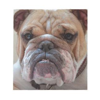 Pitbull Dog Animal Notepad