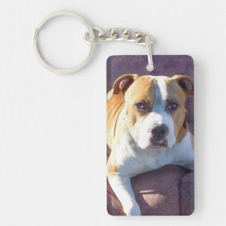 Pitbull dog key ring