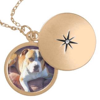 Pitbull dog round locket necklace