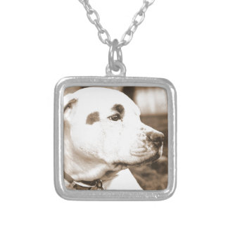 pitbull dog sepia color hate deed not breed silver plated necklace
