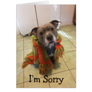 Pitbull Doghouse I'm Sorry Card