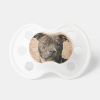 Pitbull face baby pacifier