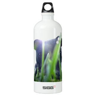 Pitbull in the Grass Water Bottle