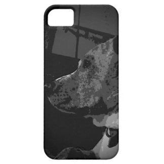 Pitbull Iphone5 case