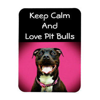 Pitbull Love Photo Magnet