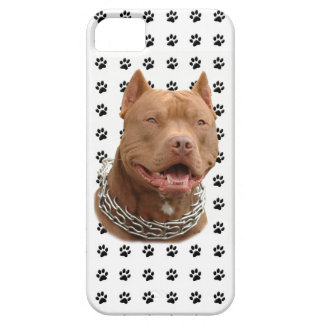 Pitbull paws iPhone 5 cases