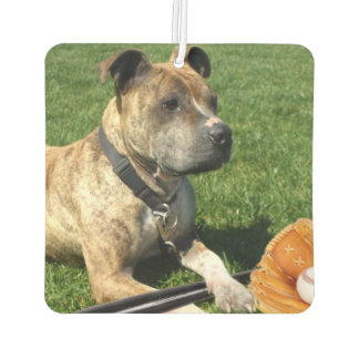 Pitbull puppy car air freshener