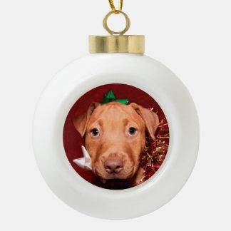 Pitbull puppy Christmas Ornaments