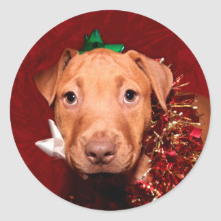 Pitbull puppy Christmas Round Stickers