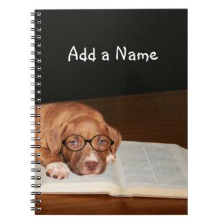 Pitbull puppy reads notebooks