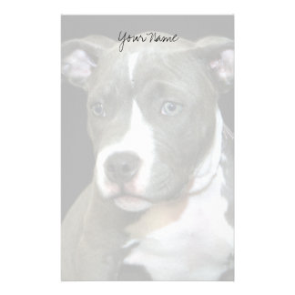 Pitbull puppy stationary custom stationery