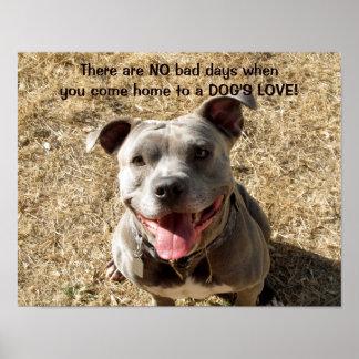 Pitbull Smiling Dog's Love Poster