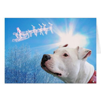 Pitbull White Dog Christmas Wish Card