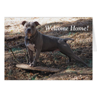 Pitbull with Skateboard Welcome Home Card