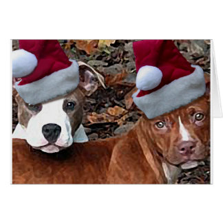 Pitbulls Christmas Look on Greeting Cards