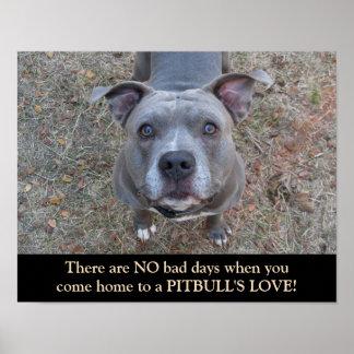 Pitbull's Love Dog Poster